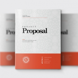 Red Accent Business Project Proposal