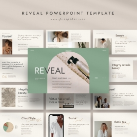 Reveal Presentation Template