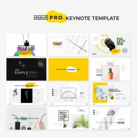 Rexus Pro | Minimal & Creative Keynote Template