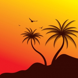 Silhouette Coconut Tree With Light Sky