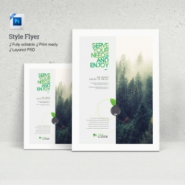 Style Flyer