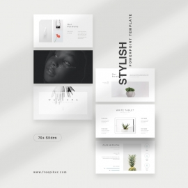 Stylish PowerPoint Template