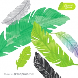 Tropical Leaves Vector Elements