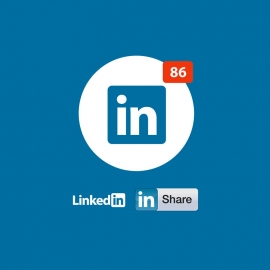 Linkedin Logo Icon & Share Vector