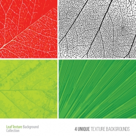 Leaf Texture Background Collection
