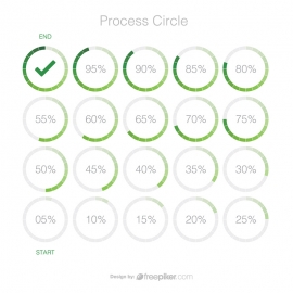 Process Circle with Percentage