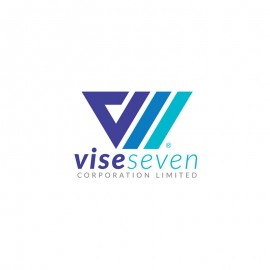 V Letter & Roman Seven Corporate Minimal Creative Logo