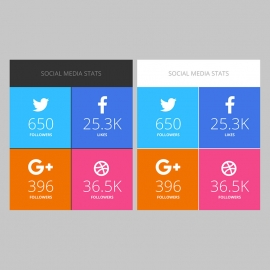 Social Media Stats or Infographic UI