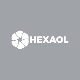 Hexagon Minimal Polygon Symbol Logo