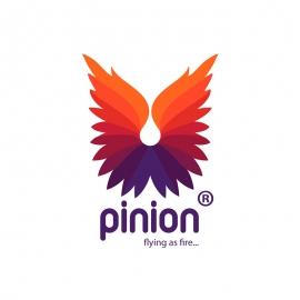 Pinion Fire Feather Logo