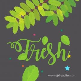 Fresh Green Decorative Leaves Design Elements