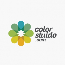Colorful Flower Creative Logo