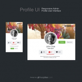 Admin Profile UI Responsive Profile User Interface