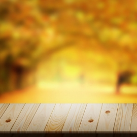 Wooden Dock & Forest Background with Spotlight