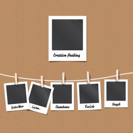 Polaroid Vector Photo Frames & Film