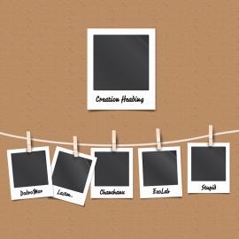 Polaroid Vector Photo Frames & Film