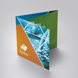 Triangle Style Square TriFold Brochure With Orange/Green