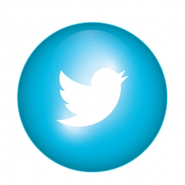 Twitter Icon Single Item