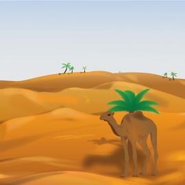 Vector Of Desert