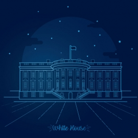 White House Night Moment