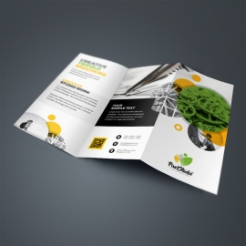 Yellow / Green TriFold Brochure With Cricle
